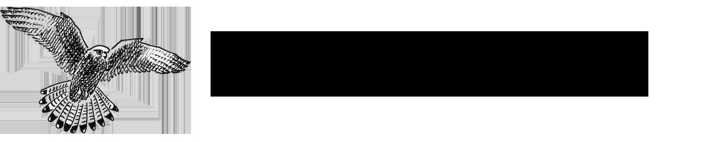 NVV Pfäffikon